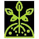 plantas-icon-gran-verd